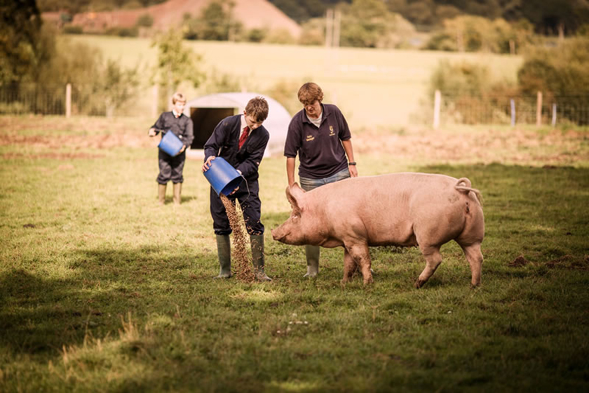 Bredon School Farm